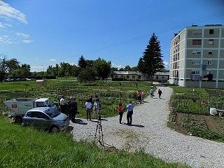 gradski vrtovi 3 m